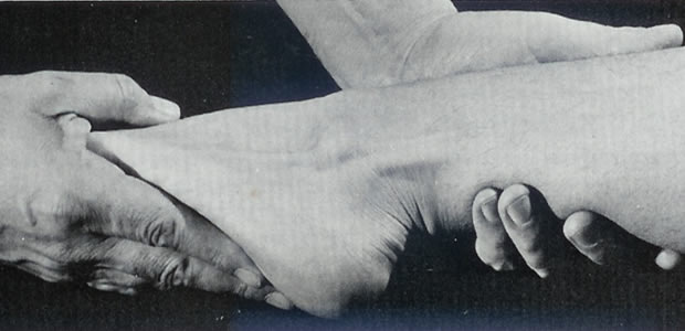 Manuelni mišićni test