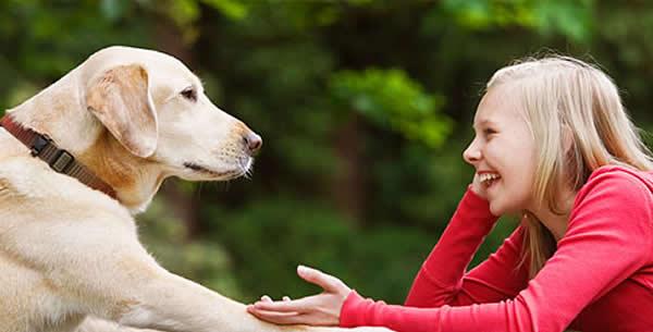 Pas i maca bolji od aspirina