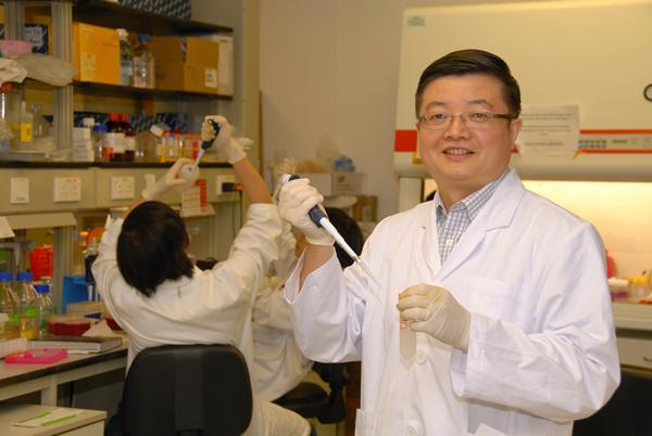 Kinezi otkrili blokator HIV virusa