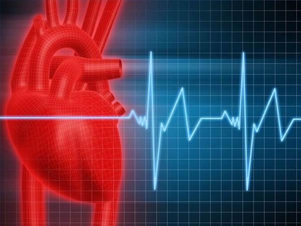 Testosteron poboljšava rad srca